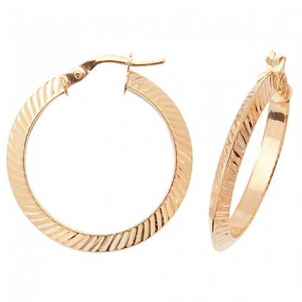 Just Gold Earrings -9Ct Earrings, ER878
